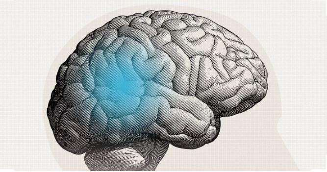 3 mẹo giúp bộ não của bạn luôn khỏe mạnh